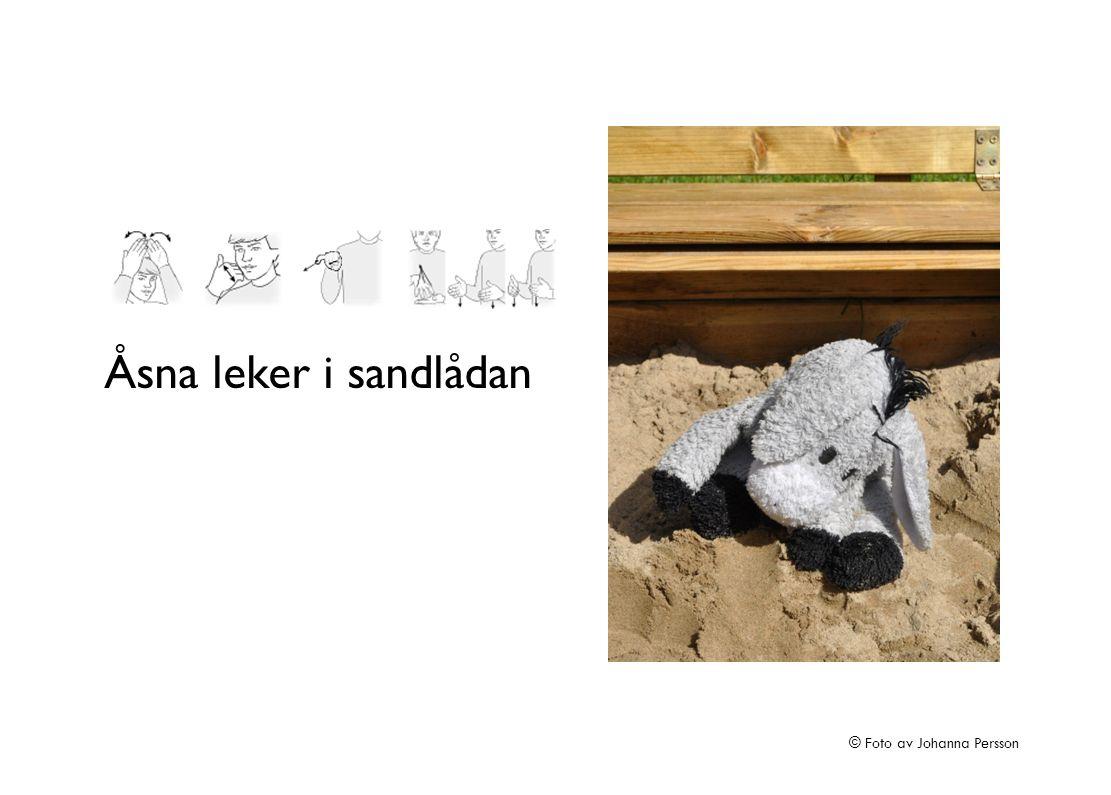 Åsna leker i sandlådan © Foto av Johanna Persson