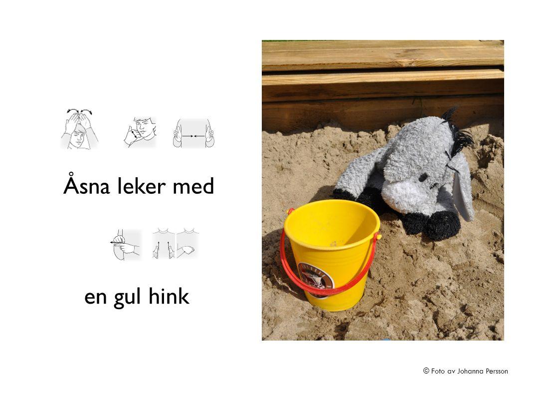 Åsna leker med en gul hink © Foto av Johanna Persson