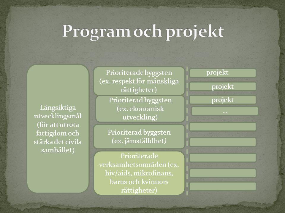 Långsiktiga utvecklingsmål (för att utrota fattigdom och stärka det civila samhället) Prioriterade byggsten (ex. respekt för mänskliga rättigheter) Pr