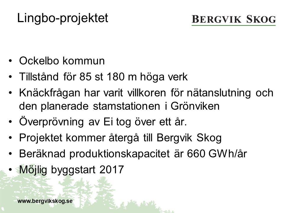 Skaftåsen-projektet Härjedalens kommun Arise driver projektet i samarbete med Bergvik MPD gett tillstånd till 41 verk med 180 m totalhöjd Tillståndet överklagat till MMD av båda parter Beslut väntas under 2016.