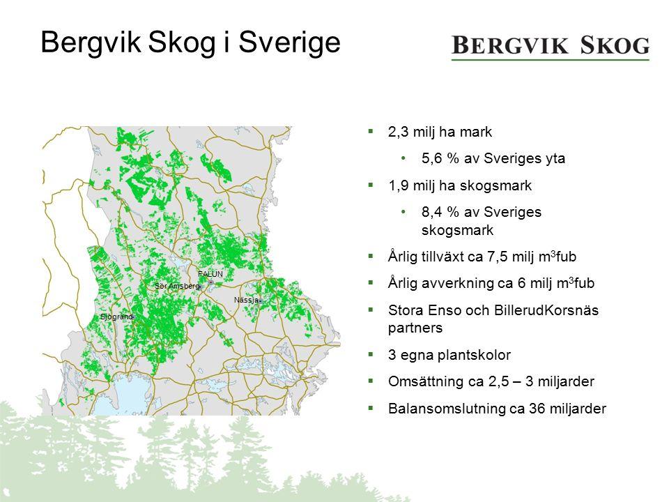 Bergvik Skog i Sverige  2,3 milj ha mark 5,6 % av Sveriges yta  1,9 milj ha skogsmark 8,4 % av Sveriges skogsmark  Årlig tillväxt ca 7,5 milj m 3 f