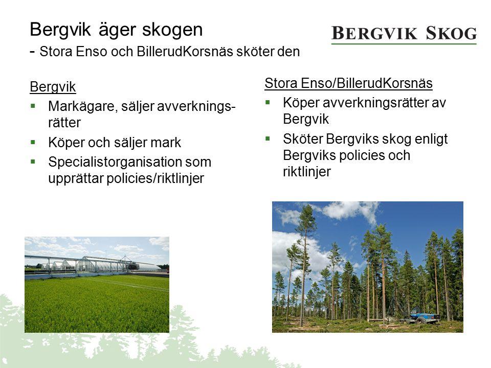 Bergvik äger skogen - Stora Enso och BillerudKorsnäs sköter den Bergvik  Markägare, säljer avverknings- rätter  Köper och säljer mark  Specialistor
