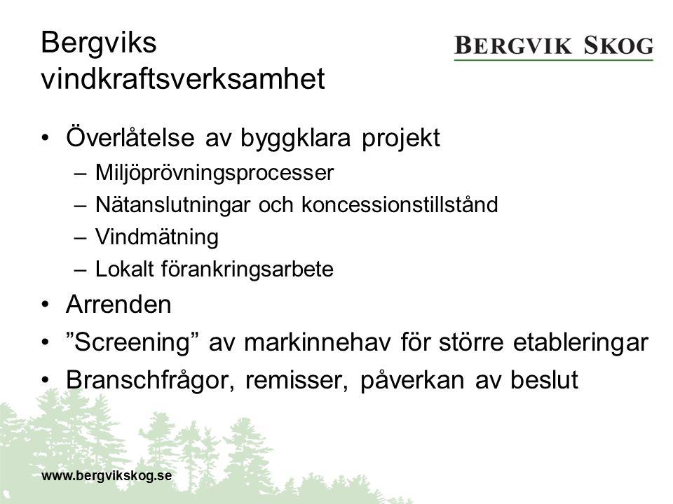 Bergviks vindkraftsverksamhet Överlåtelse av byggklara projekt –Miljöprövningsprocesser –Nätanslutningar och koncessionstillstånd –Vindmätning –Lokalt