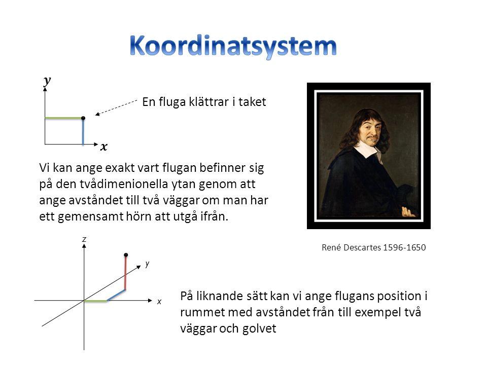 René Descartes 1596-1650 En fluga klättrar i taket Vi kan ange exakt vart flugan befinner sig på den tvådimenionella ytan genom att ange avståndet till två väggar om man har ett gemensamt hörn att utgå ifrån.