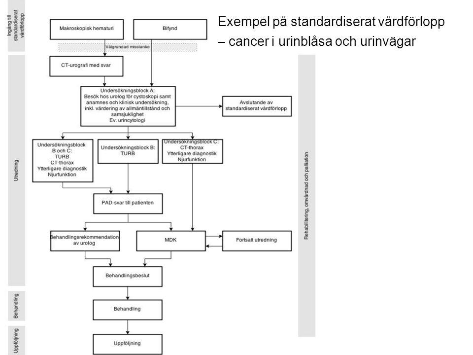 Exempel på standardiserat vårdförlopp – cancer i urinblåsa och urinvägar