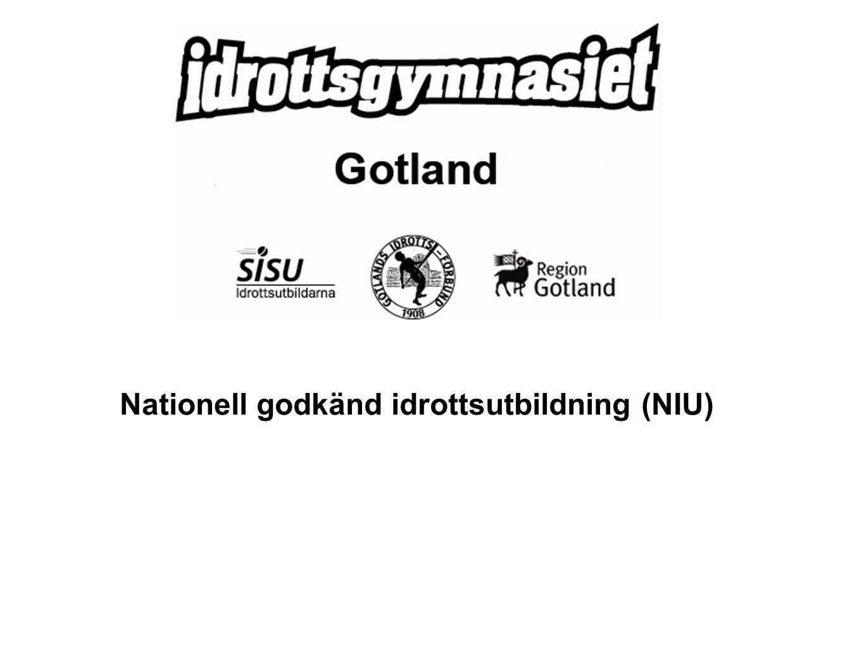 Nationell godkänd idrottsutbildning (NIU)