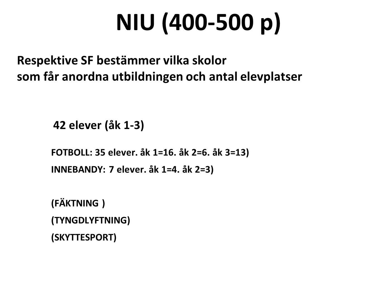 NIU (400-500 p) 42 elever (åk 1-3) FOTBOLL: 35 elever.