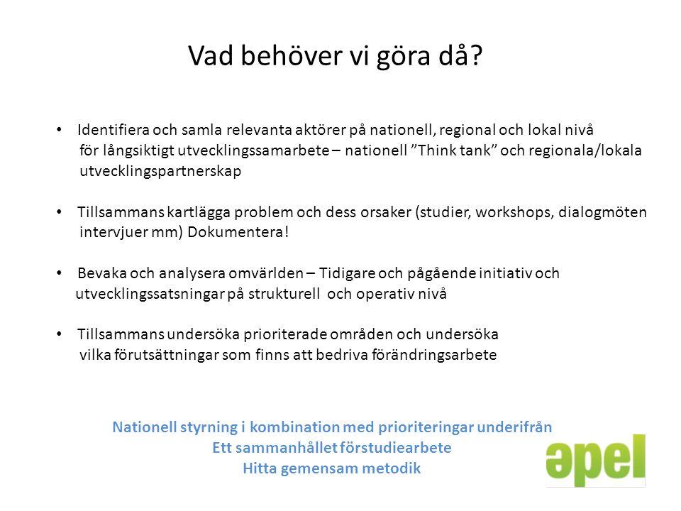 Vad behöver vi göra då? Identifiera och samla relevanta aktörer på nationell, regional och lokal nivå för långsiktigt utvecklingssamarbete – nationell