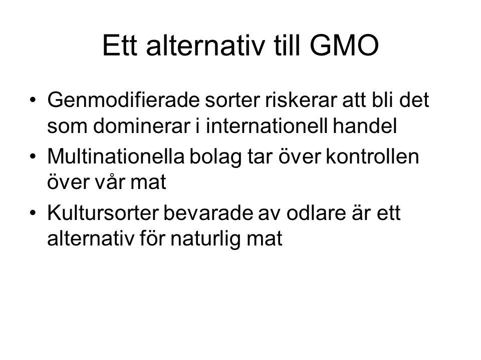 Ett alternativ till GMO Genmodifierade sorter riskerar att bli det som dominerar i internationell handel Multinationella bolag tar över kontrollen över vår mat Kultursorter bevarade av odlare är ett alternativ för naturlig mat