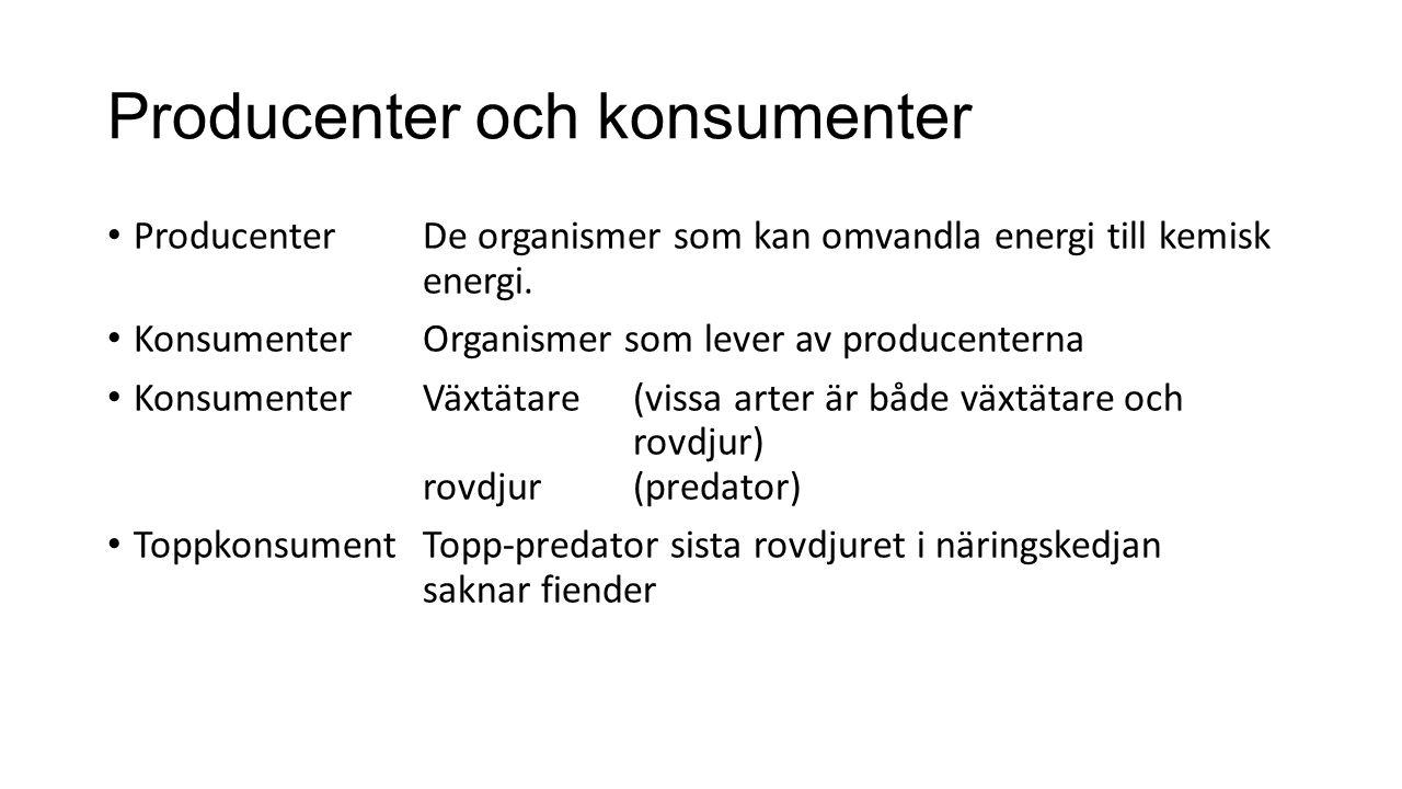 Producenter och konsumenter ProducenterDe organismer som kan omvandla energi till kemisk energi. KonsumenterOrganismer som lever av producenterna Kons