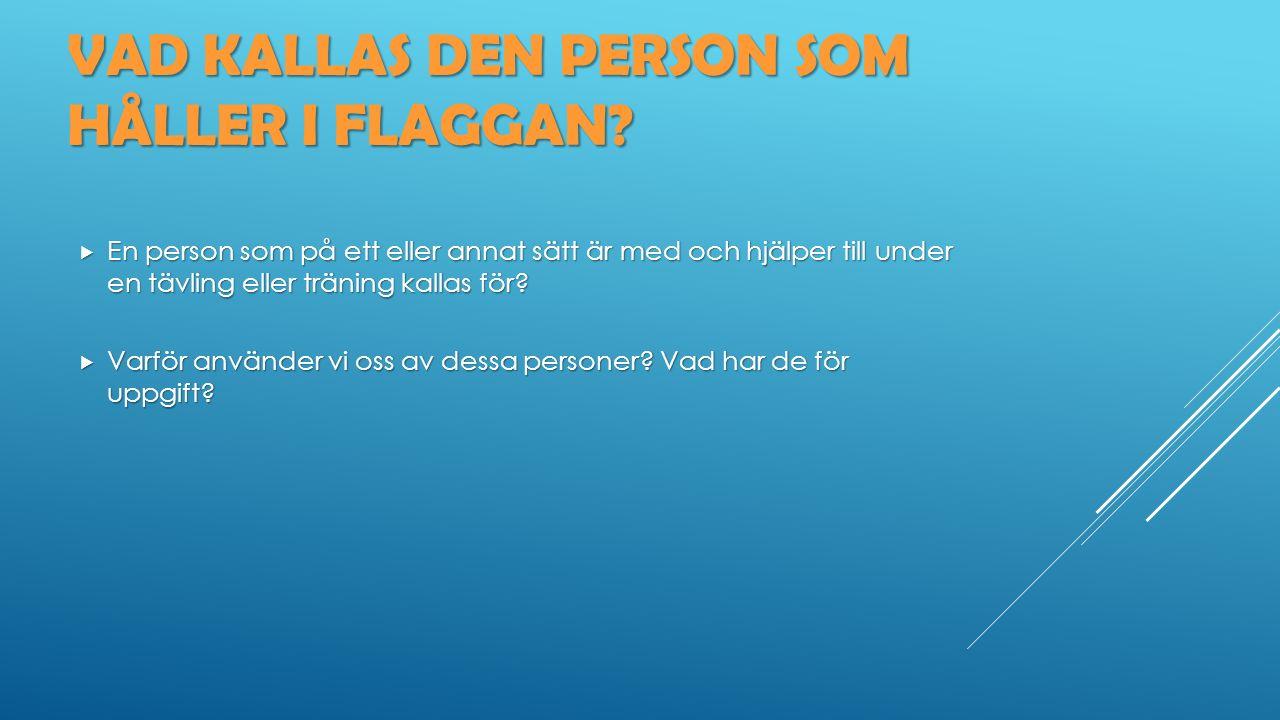 VAD KALLAS DEN PERSON SOM HÅLLER I FLAGGAN.