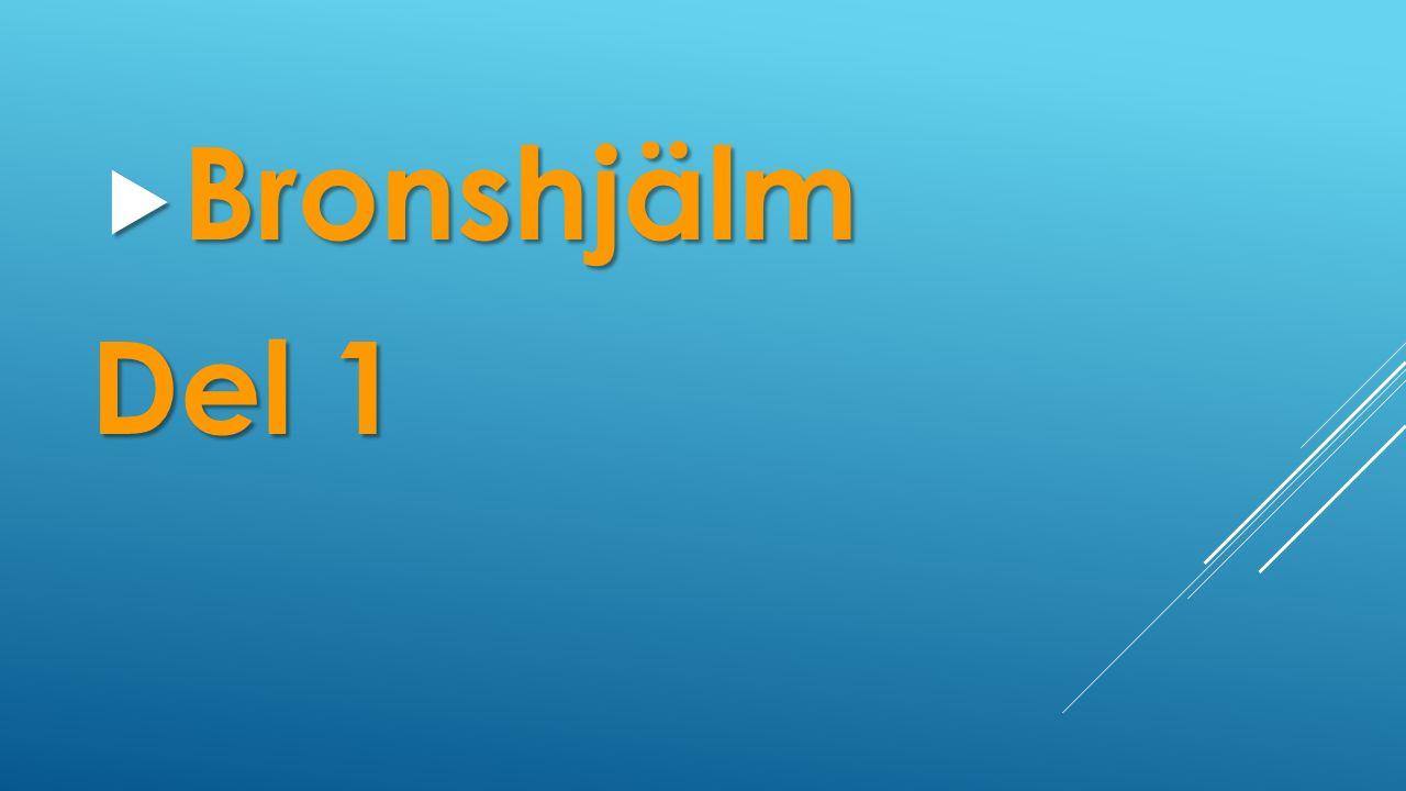  Bronshjälm Del 1