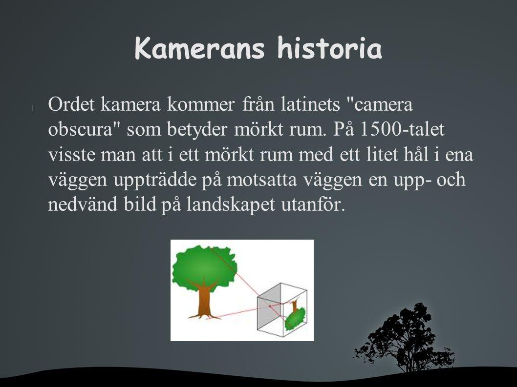 Kamerans historia Ordet kamera kommer från latinets camera obscura som betyder mörkt rum.