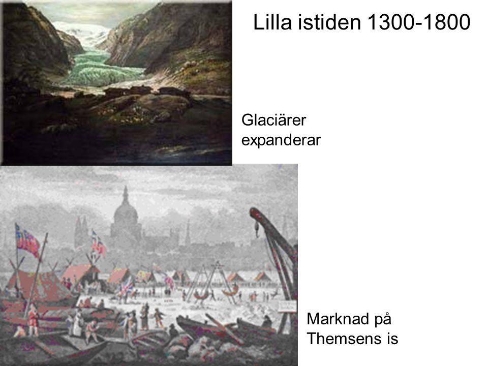Lilla istiden 1300-1800 Glaciärer expanderar Marknad på Themsens is
