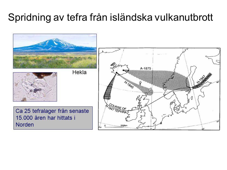 Spridning av tefra från isländska vulkanutbrott Ca 25 tefralager från senaste 15.000 åren har hittats i Norden Hekla