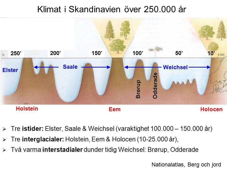 Klimat i Skandinavien över 250.000 år  Tre istider: Elster, Saale & Weichsel (varaktighet 100.000 – 150.000 år)  Tre interglacialer: Holstein, Eem & Holocen (10-25.000 år),  Två varma interstadialer dunder tidig Weichsel: Brørup, Odderade Nationalatlas, Berg och jord Holstein EemHolocen Saale Elster Brørup Odderade Weichsel 200'100'150'50' 10'250'