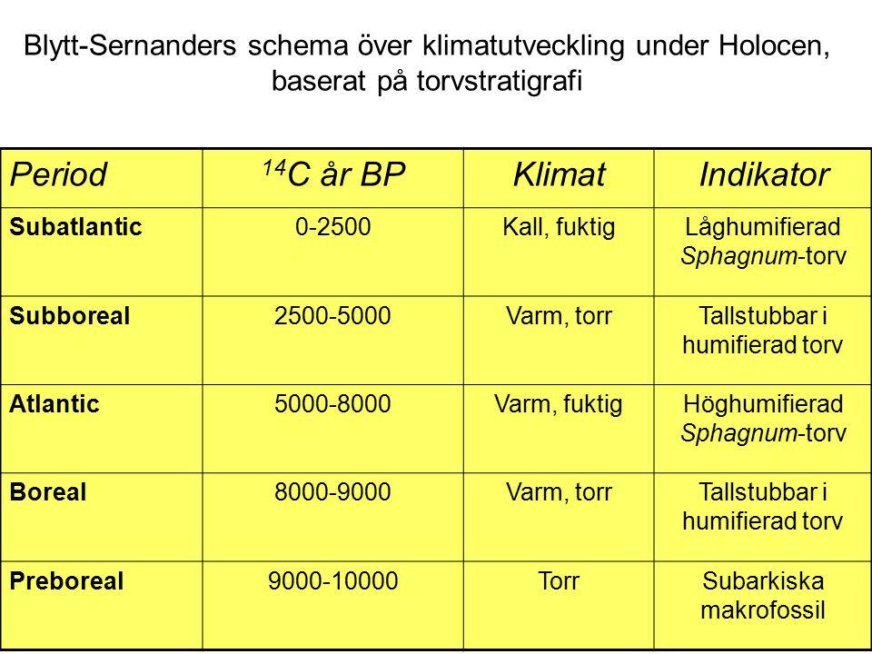 Blytt-Sernanders schema över klimatutveckling under Holocen, baserat på torvstratigrafi Period 14 C år BPKlimatIndikator Subatlantic0-2500Kall, fuktigLåghumifierad Sphagnum-torv Subboreal2500-5000Varm, torrTallstubbar i humifierad torv Atlantic5000-8000Varm, fuktigHöghumifierad Sphagnum-torv Boreal8000-9000Varm, torrTallstubbar i humifierad torv Preboreal9000-10000TorrSubarkiska makrofossil