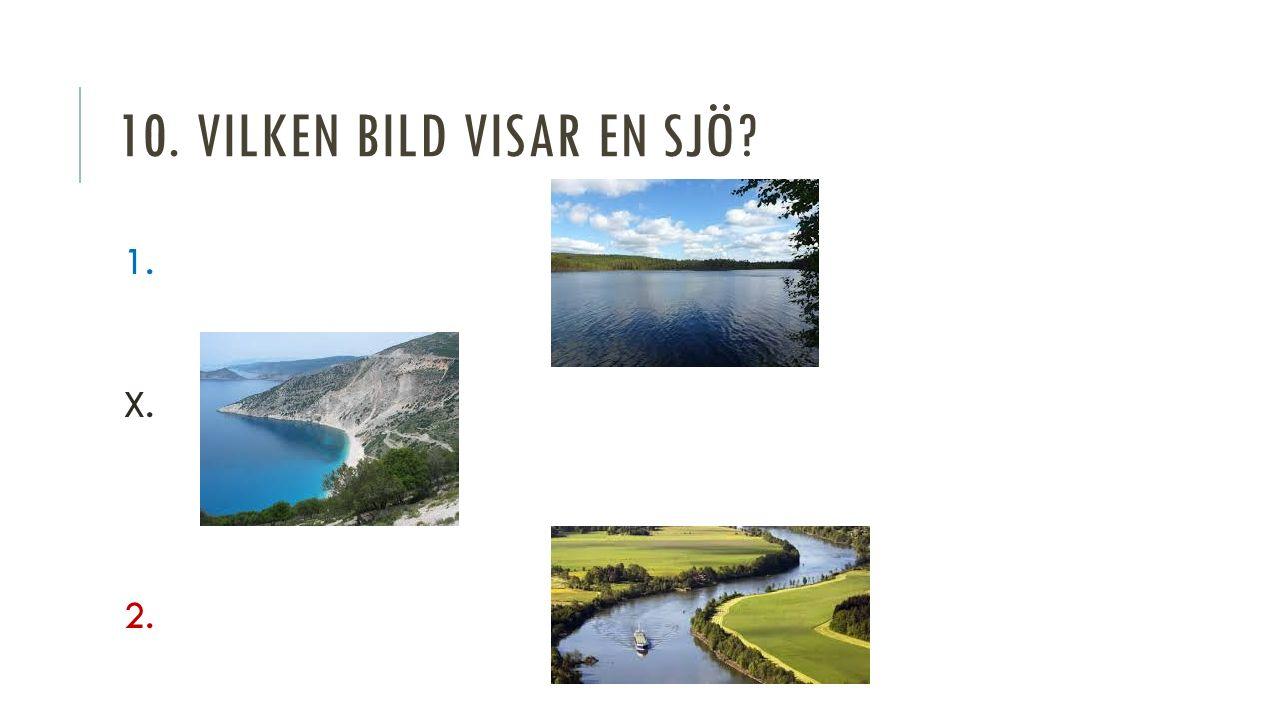 10. VILKEN BILD VISAR EN SJÖ 1. X. 2.