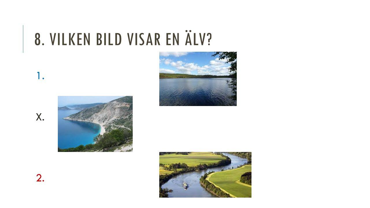 8. VILKEN BILD VISAR EN ÄLV 1. X. 2.