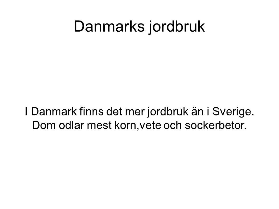 Danmarks jordbruk I Danmark finns det mer jordbruk än i Sverige.