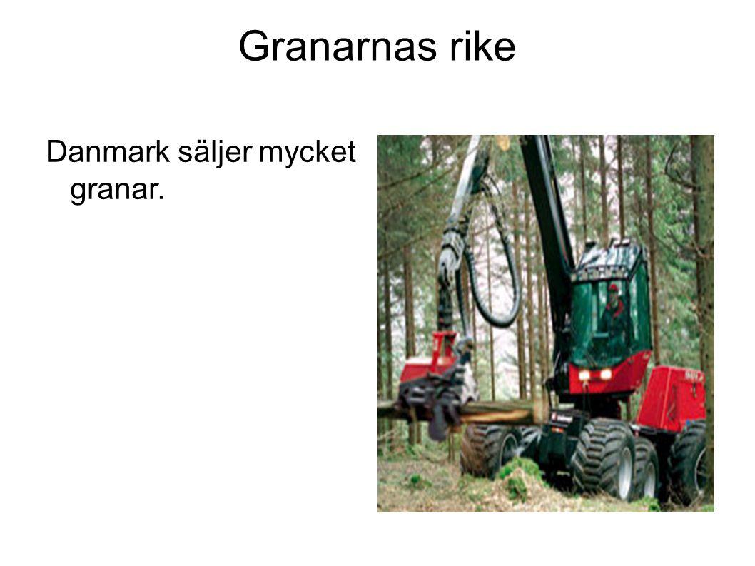 Granarnas rike Danmark säljer mycket granar.