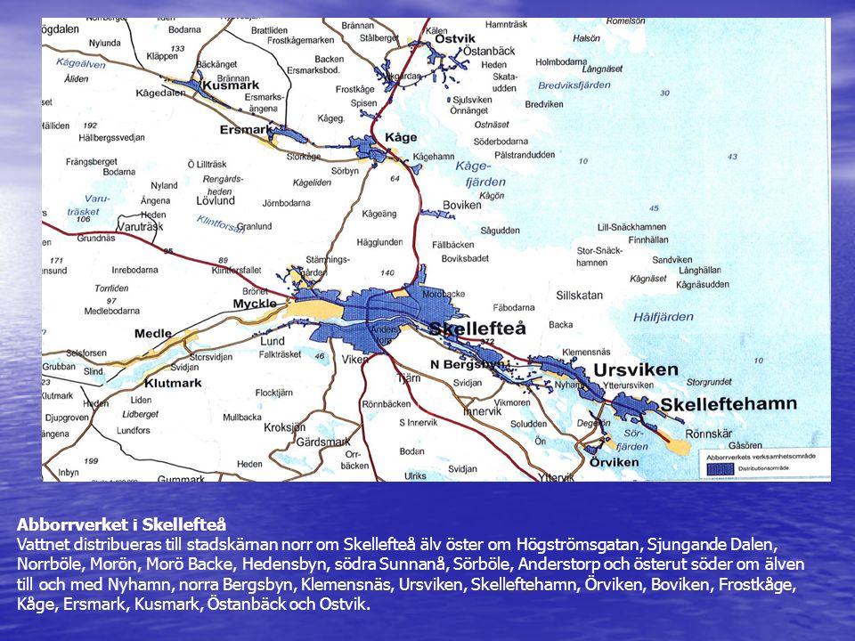 Abborrverket i Skellefteå Vattnet distribueras till stadskärnan norr om Skellefteå älv öster om Högströmsgatan, Sjungande Dalen, Norrböle, Morön, Morö Backe, Hedensbyn, södra Sunnanå, Sörböle, Anderstorp och österut söder om älven till och med Nyhamn, norra Bergsbyn, Klemensnäs, Ursviken, Skelleftehamn, Örviken, Boviken, Frostkåge, Kåge, Ersmark, Kusmark, Östanbäck och Ostvik.