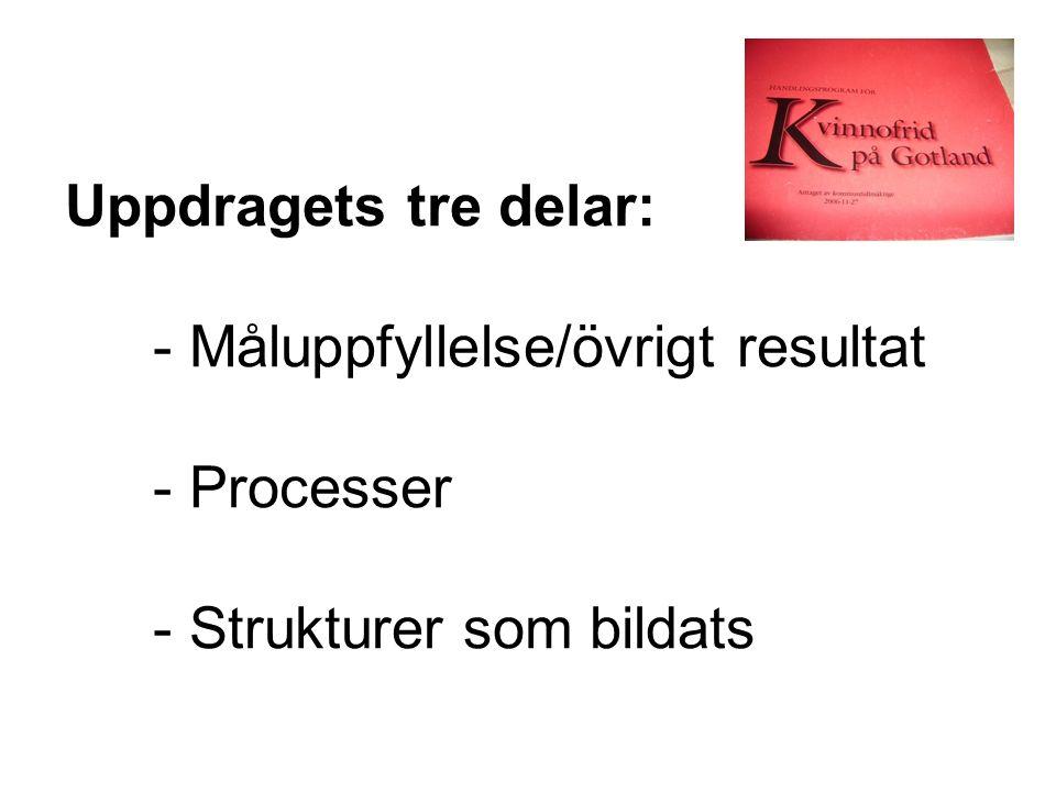 Uppdragets tre delar: - Måluppfyllelse/övrigt resultat - Processer - Strukturer som bildats