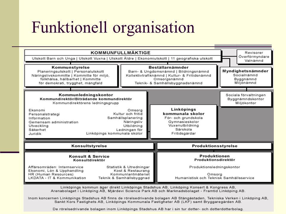 Funktionell organisation