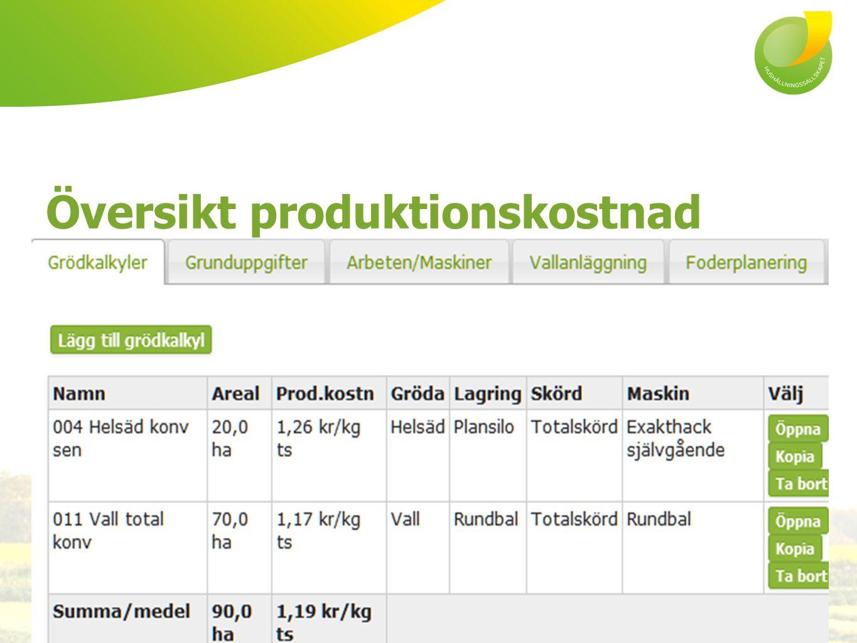 Översikt produktionskostnad