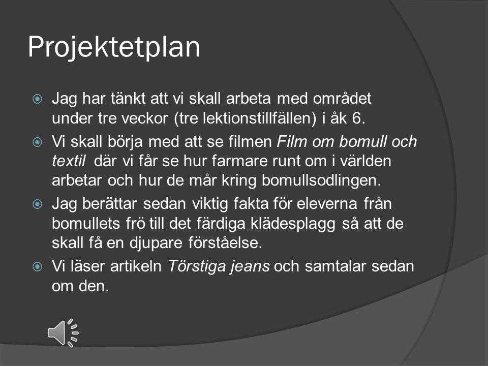 Textilproduktionen  Sveriges konsumtion  Klädesbranschens ökning  Färgning