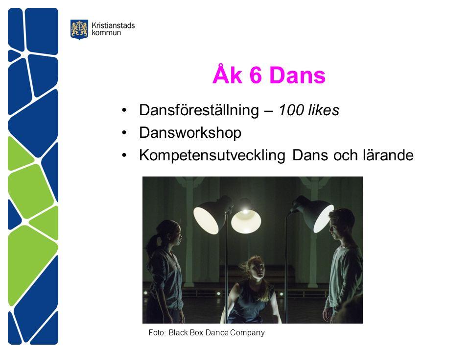 Åk 6 Dans Dansföreställning – 100 likes Dansworkshop Kompetensutveckling Dans och lärande Foto: Black Box Dance Company