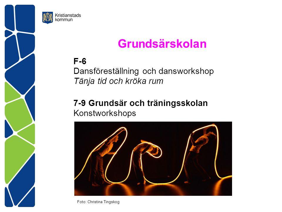Grundsärskolan F-6 Dansföreställning och dansworkshop Tänja tid och kröka rum 7-9 Grundsär och träningsskolan Konstworkshops Foto: Christina Tingskog