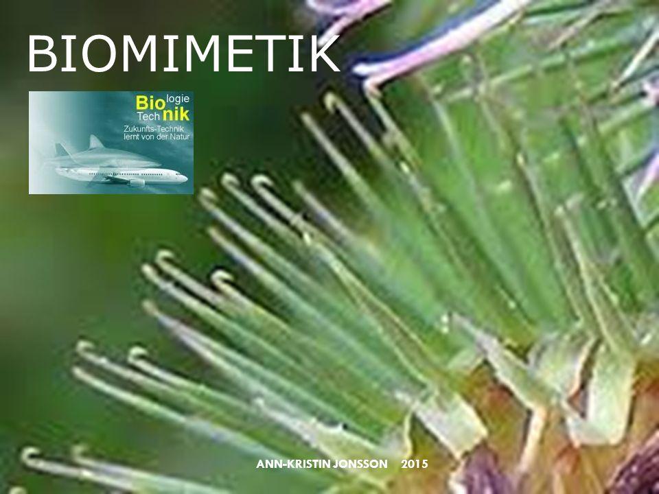 BIOMIMETIK ANN-KRISTIN JONSSON 2015