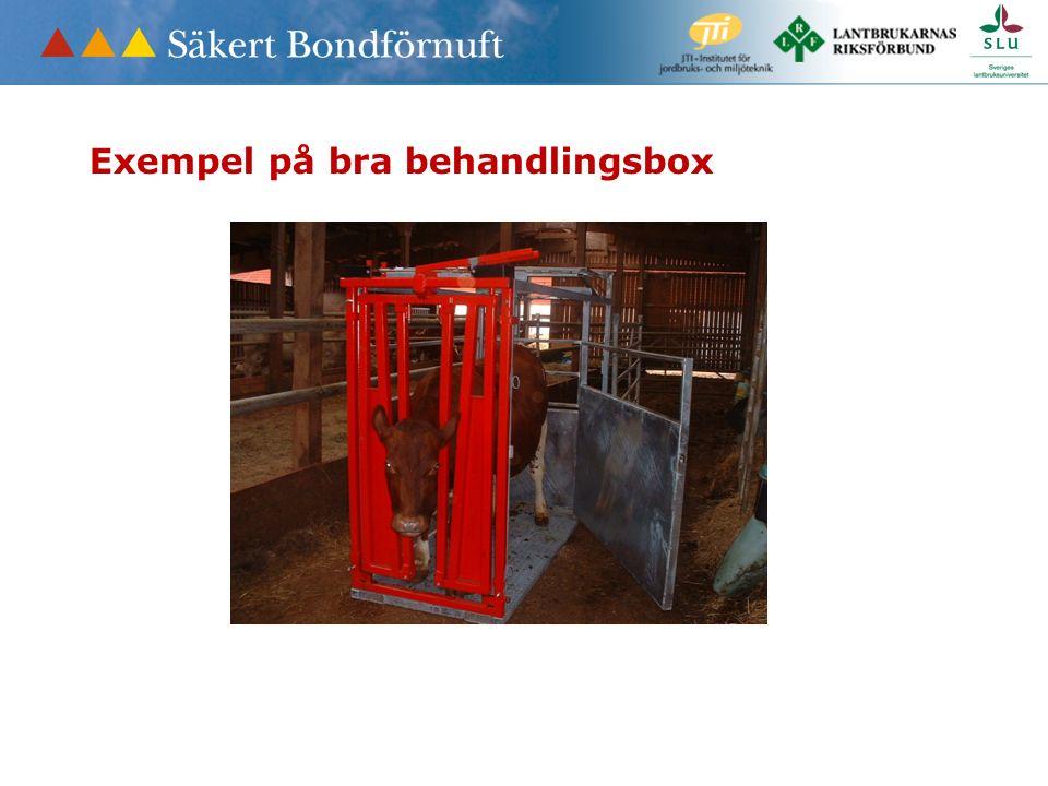 Exempel på bra behandlingsbox