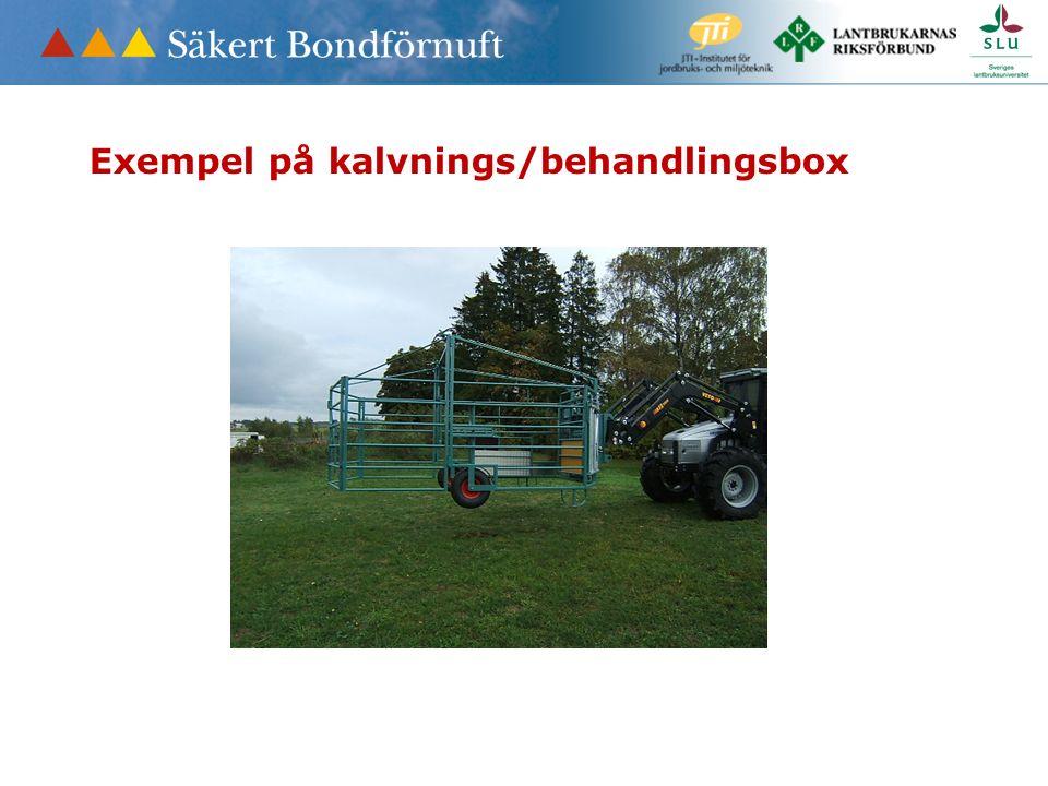 Exempel på kalvnings/behandlingsbox