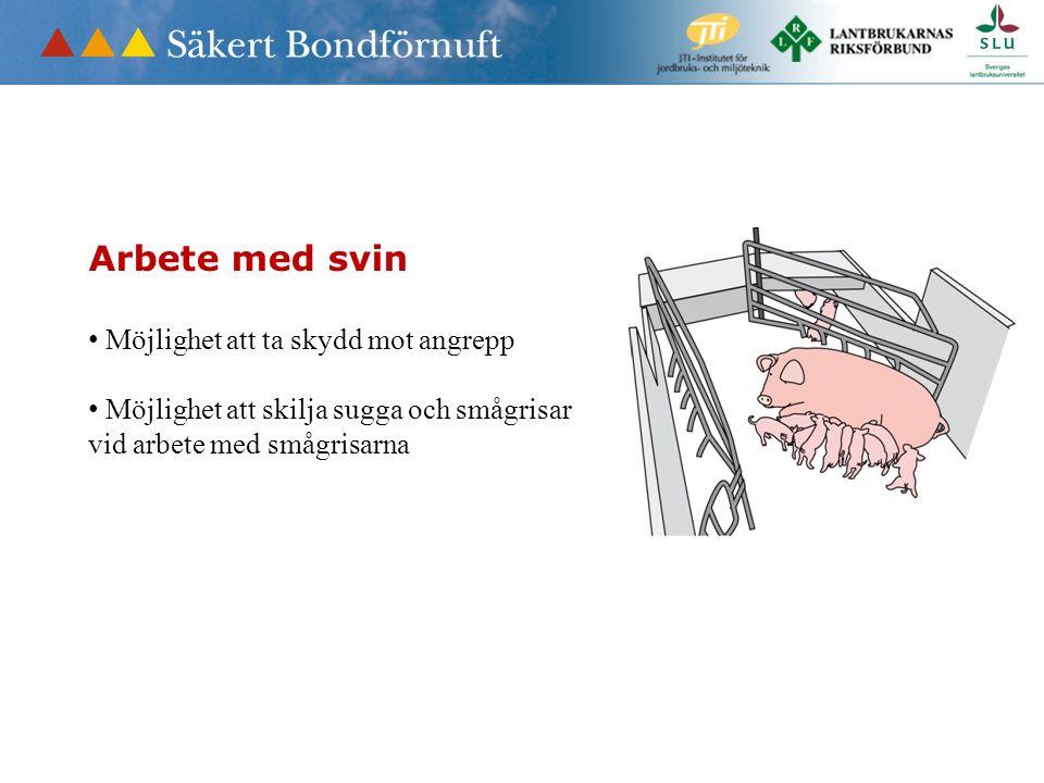 Arbete med svin Möjlighet att ta skydd mot angrepp Möjlighet att skilja sugga och smågrisar vid arbete med smågrisarna