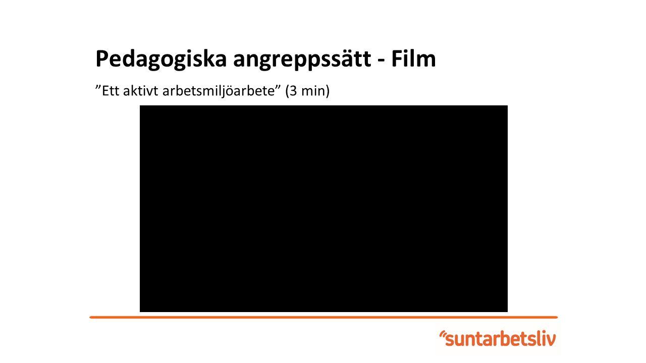Pedagogiska angreppssätt - Film Fokusera på det Friska , professor Eva Vingård (7 min)
