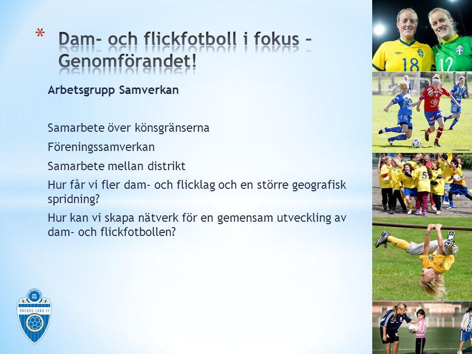 Arbetsgrupp TALANGUTVECKLING Samarbete KIF Örebro Talangsatsningar Hur tar vi hand om talangerna i distriktet.