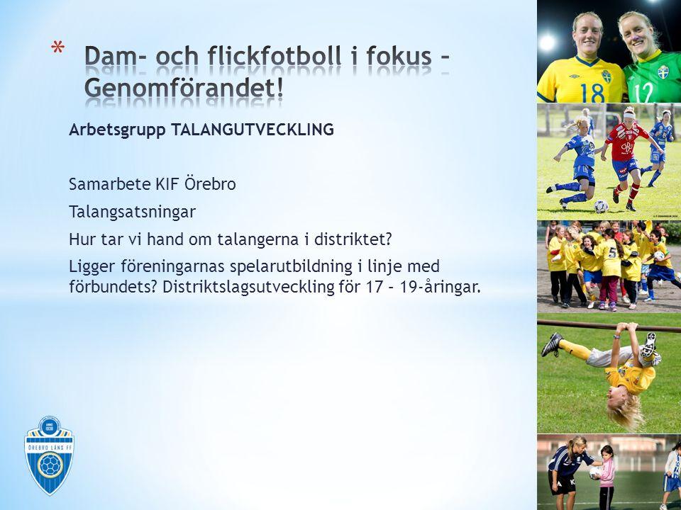 Arbetsgrupp TALANGUTVECKLING Samarbete KIF Örebro Talangsatsningar Hur tar vi hand om talangerna i distriktet? Ligger föreningarnas spelarutbildning i
