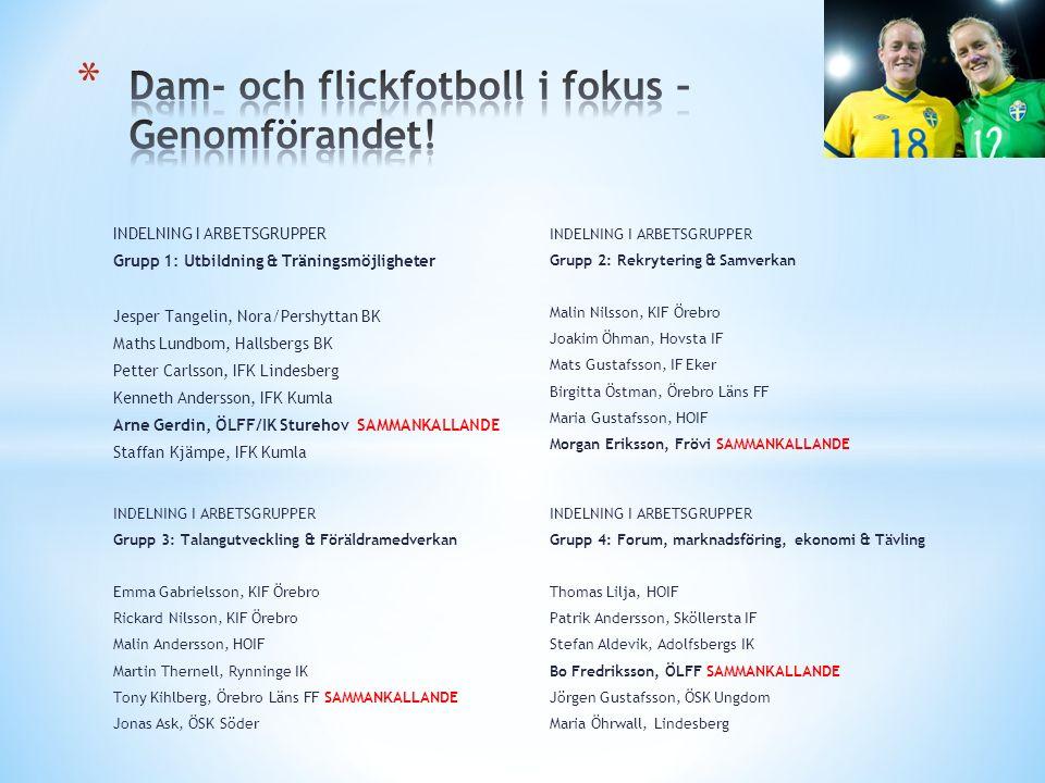 INDELNING I ARBETSGRUPPER Grupp 1: Utbildning & Träningsmöjligheter Jesper Tangelin, Nora/Pershyttan BK Maths Lundbom, Hallsbergs BK Petter Carlsson,
