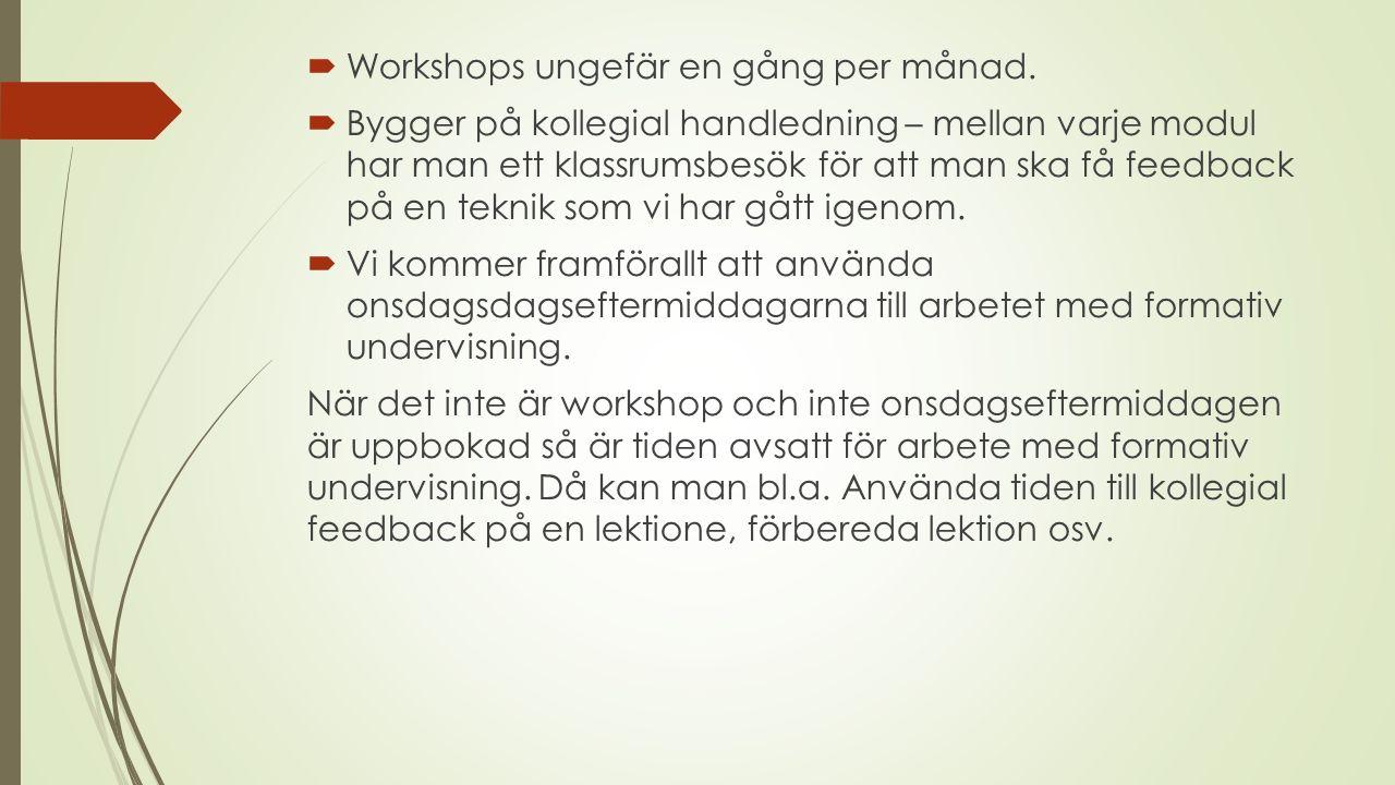  Workshops ungefär en gång per månad.  Bygger på kollegial handledning – mellan varje modul har man ett klassrumsbesök för att man ska få feedback p