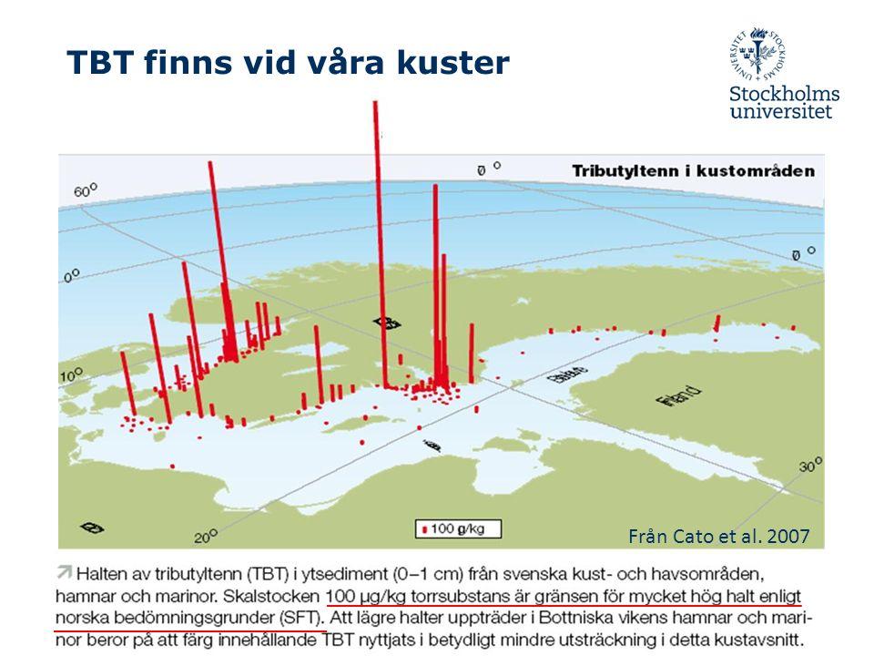 TBT finns vid våra kuster Från Cato et al. 2007