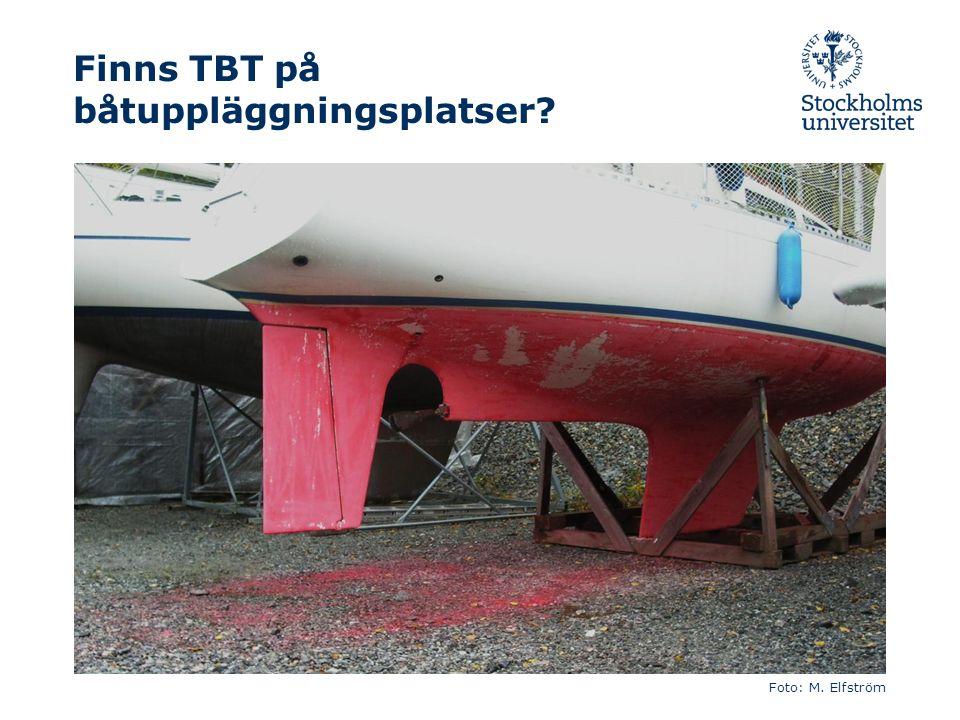 Finns TBT på båtuppläggningsplatser Foto: M. Elfström