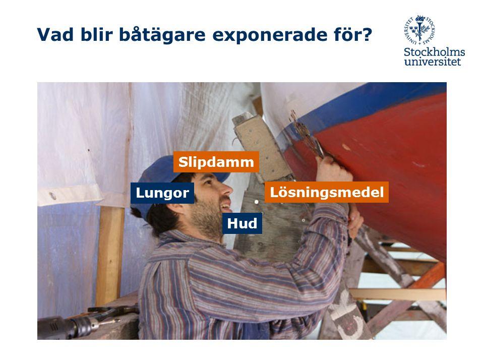 Vad blir båtägare exponerade för Slipdamm Lösningsmedel Lungor Hud