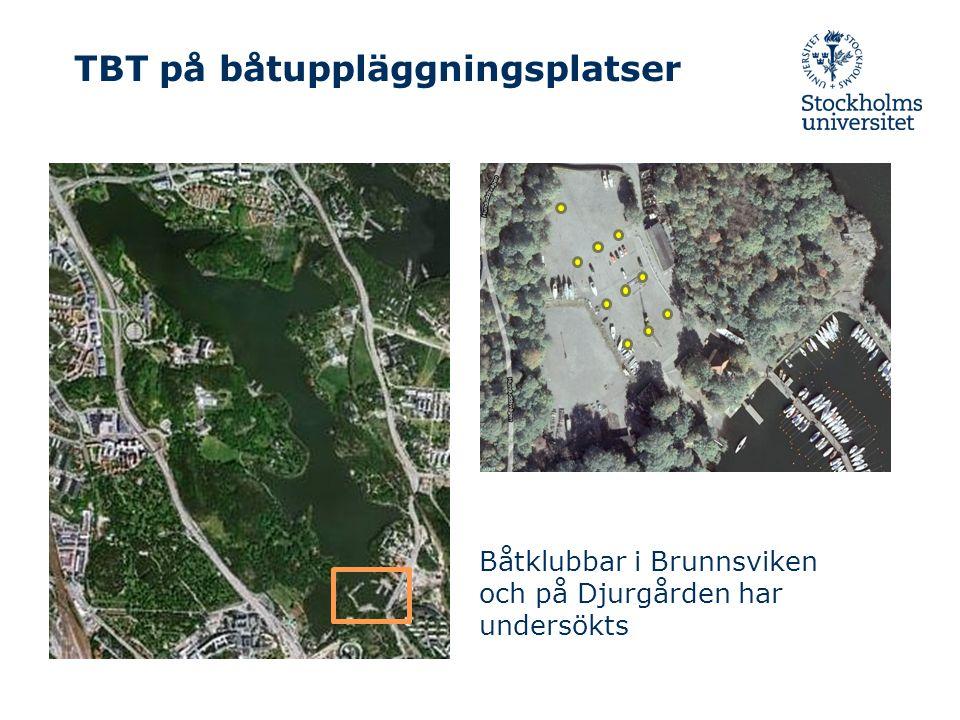 TBT på båtuppläggningsplatser Båtklubbar i Brunnsviken och på Djurgården har undersökts