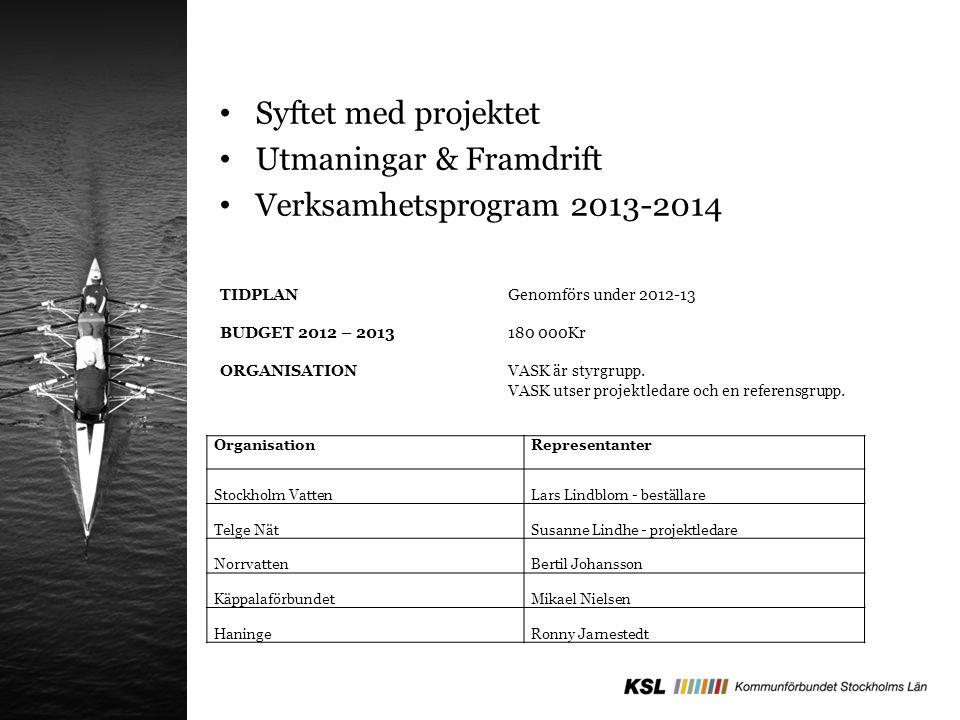TIDPLAN Genomförs under 2012-13 BUDGET 2012 – 2013 180 000Kr ORGANISATION VASK är styrgrupp.