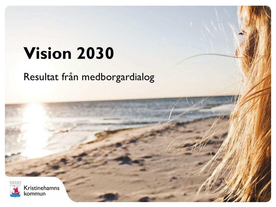 En vision i sitt sammanhang (schematisk) Vision 2030 Prioriterat område 1 Prioriterat område 3 Prioriterat område 2 Prioriterat område 4 Mål Strategi/er Steg 1, Steg 2