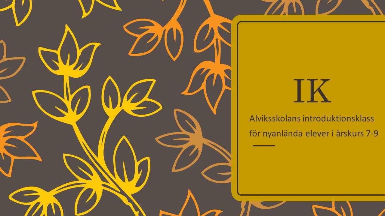 IK Alviksskolans introduktionsklass för nyanlända elever i årskurs 7-9