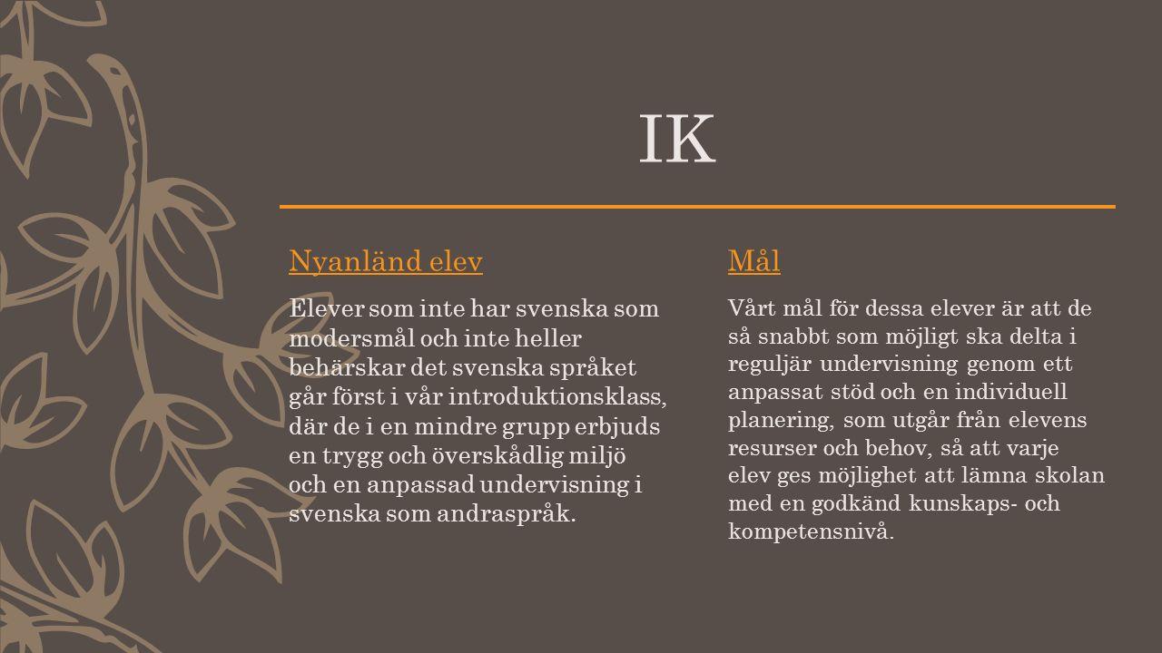 IK Nyanländ elev Elever som inte har svenska som modersmål och inte heller behärskar det svenska språket går först i vår introduktionsklass, där de i en mindre grupp erbjuds en trygg och överskådlig miljö och en anpassad undervisning i svenska som andraspråk.