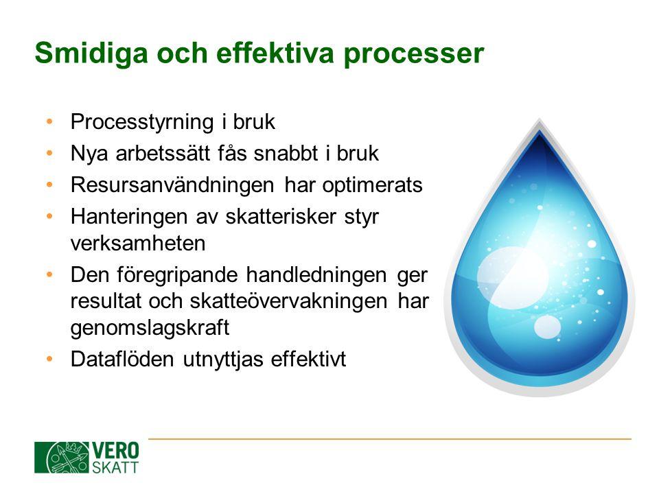 Smidiga och effektiva processer Processtyrning i bruk Nya arbetssätt fås snabbt i bruk Resursanvändningen har optimerats Hanteringen av skatterisker s
